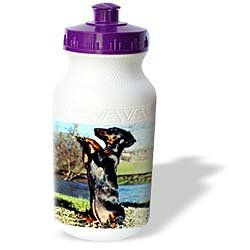 Dogs Dachshund - Dapple Dachshund - Water Bottles