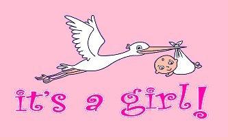 New 3x5 It's a Girl Flag 3 x 5 Newborn Baby Banner