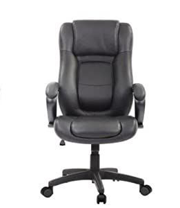 Amazon Com Eurotech Seating Le521 High Back Black Leather