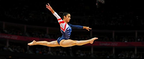 Aly-Raisman-Sports-Poster-Photo-Limited-Print-Sexy-Celebrity-USA-Olympic-Gymnastics-Athlete-Size-24x36-2