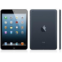iPad mini wifi 16GB Black