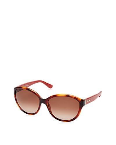Ferragamo Gafas de Sol SF717S_207-58 (58 mm) Havana / Rojo