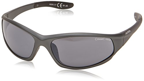 Alpina Sonnenbrille WYLDER