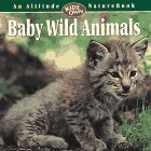 Baby Wild Animals (An Altitude