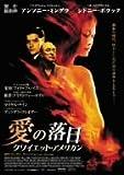 愛の落日 [DVD]