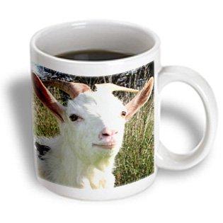 Goat Mug, 11 ounce