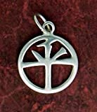 Sterling Silver Charm, PEACE in Chinese, 3/4 inch tall Reviews
