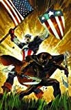 img - for Captain America / Black Panther: Flags of Our Fathers #1 book / textbook / text book