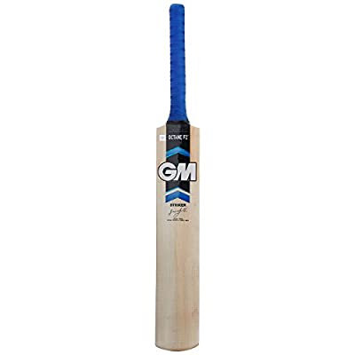 GM Octane F2 Striker Kashmir Willow Cricket Bat, Short Handle