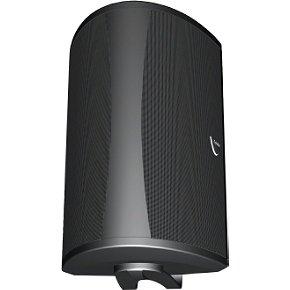 Definitive Technology AW 6500 Outdoor Speaker (Single, Black)