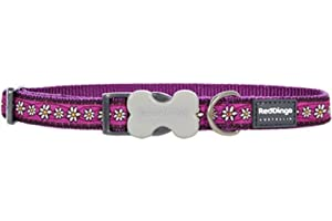 Red Dingo Designer Dog Collar, Daisy Chain Purple (25mm x 41-63cm)