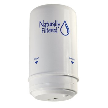 Naturally Filtered Shower Filter Cartridge (Compatible with Wellness Filter)