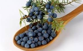 Herbs: Juniper Berries ~ 1 Oz ~ Organic ~ Wicca