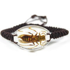 REALBUG Wasp Bracelet, Clear