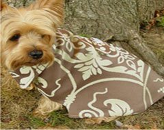 Chocolate Pistachio Gelato Dog Coat (XSmall)
