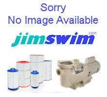 Pentair 5821302 wallspring natural regal lion decorative accent categories for Does lowes sell swimming pool supplies