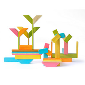 Tegu Flowers - Tints -  Magnetic Wooden Blocks