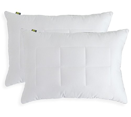 Maison Quilted Cotton Cover Side Sleeper Bed Pillow, Standard/Queen, White, 2-Pack (Down Pillow Side Sleeper compare prices)