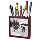 31MdwdP6hzL. SL160  Kike Calvo Arctic   Arctic Sledding Dogs, Churchill Manitoba Canada.   Tile Pen Holders 5 inch tile pen holder