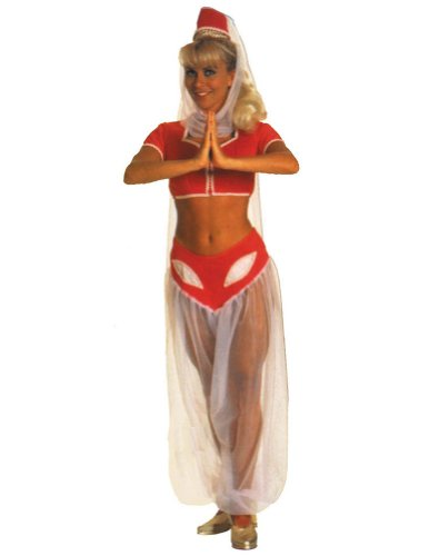 I Dream Of Jeannie Costume Adult Womens Costume