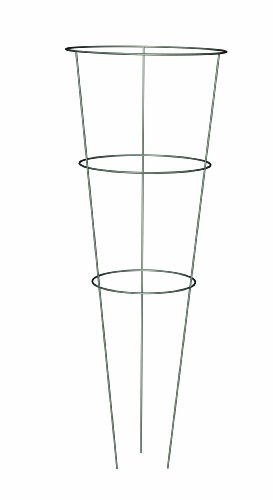 Panacea Products 89716 Heavy Duty Galvanized Tomato Cage and Plant Support, 33-Inch
