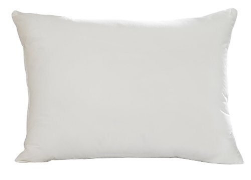 Aller-Ease Hot Water Washable Allergy Pillow, King, Medium (Aller Ease Hot Water Pillow compare prices)