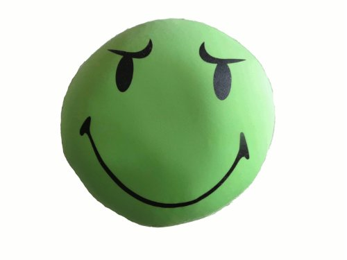 Tache Squishy Micro Bead Are You Serious Face Pillow Green front-474743