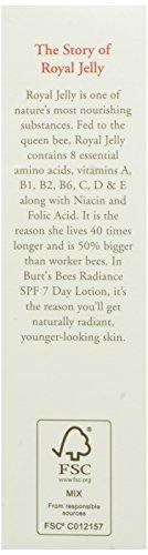 Burt's Bees小蜜蜂 蜂王浆系列  日用乳液 55g图片
