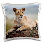 lions-female-lion-on-termite-mound-maasai-mara-kenya-16x16-inch-pillow-case