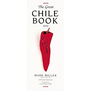 Chile Travel Information and Travel Guide.