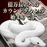 白蛇宝当財布(しろへびほうとうざいふ)
