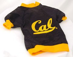 Sports Enthusiast University of California-Berkeley Football Mesh Licensed Dog Jersey... by All Star Dogs