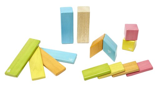 New Piece Tegu Magnetic Wooden Block