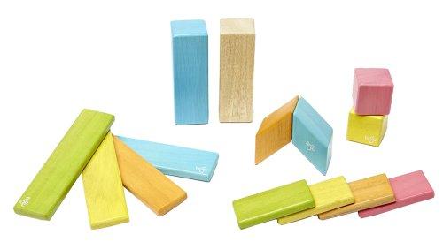 New Piece Tegu Magnetic Wooden Block