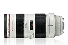Canon EF 70-200mm f/2.8L USM Telephoto Zoom Lens (USA)