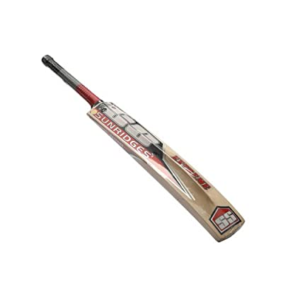 SS Extreme Kashmir Willow Cricket  Bat (Short Handle, 1100-1300 g)