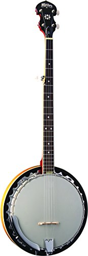 Washburn B9 - Banjo