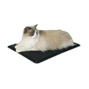 Domestic Pet Beds Igloo Heated Pet Bed Gift