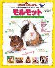 モルモット―モルモットの飼育・医学・生態・歴史…すべてがわかる (スタジオ・ムック―アニファブックス-わが家の動物・完全マニュアル-)