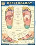Reflexology Laminated Reference Guide (Quick Study Academic Outline)
