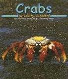 Crabs (Ocean Life)