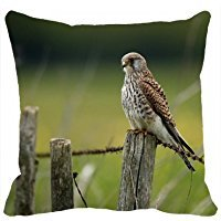 n-n-n-n-n-custom-pillowcases-home-decor-design-animal-falcon-animal-diy-pillow-cases-cover-throw-siz