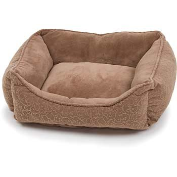 Cat Beds Furniture Special Choices For Your Cat The