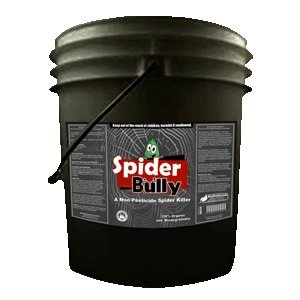 Spider bully natural spider repellent 5 Natural spider repellent