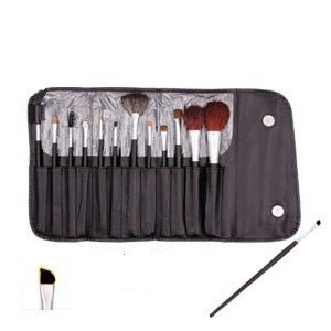 13 Piece Makeup Brush Set and Case