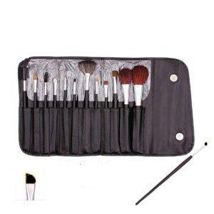 13 Piece Makeup Brush Set and Case $10.99