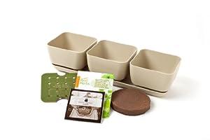Simple Garden Junior SGJR-3PC-SAND Oregano, Basil and Cilantro Herb Garden Kit, Sandstone
