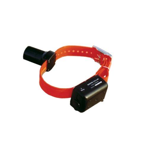 dt-systems-228-btb-800-baryton-beeper-collar-double-bip