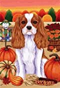 Cavalier King Charles Spaneil - by Tomoyo Pitcher, Autumn Themed Dog Breed Flags 12 x 18