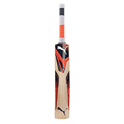 Puma Evospeed 2Y Kashmir Willow Cricket Bat, Size- 6